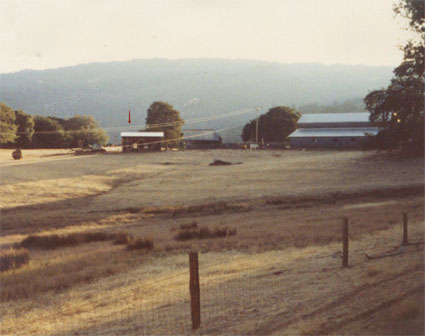 The distillery in 1982. The building to the right is the ranch barn.